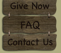 Wood Buttons to Give Now, FAQ and Contact Us