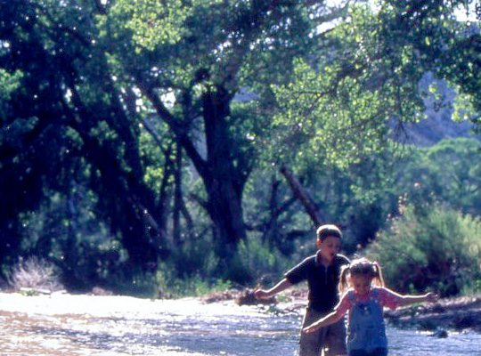 confluence-nature-park-kids