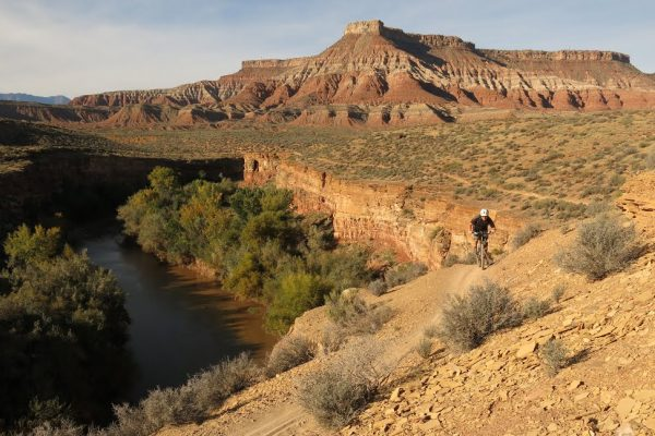 rim_trail_bike